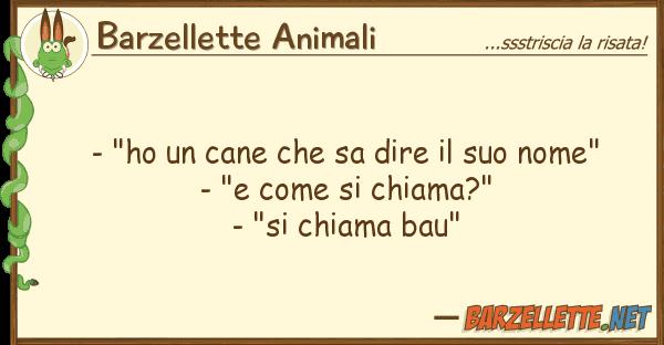 """Barzellette Animali - """"ho cane sa dire nome"""""""