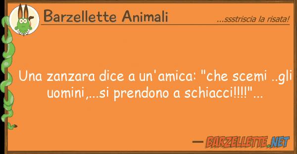 """Barzellette Animali zanzara dice un'amica: """"che scemi"""