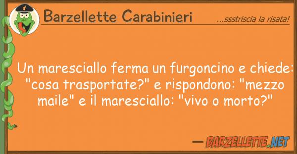 Barzellette Carabinieri maresciallo ferma furgoncino