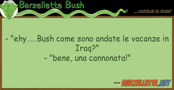 "Barzellette Bush - ""ehy.....bush sono andate vaca"