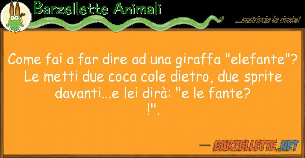 """Barzellette Animali fai far dire giraffa """"elef"""