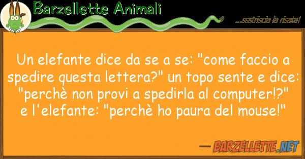 """Barzellette Animali elefante dice se: """"come facci"""