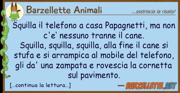 Barzellette Animali squilla telefono casa papagnetti, m