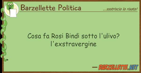 Barzellette Politica cosa fa rosi bindi sotto l'ulivo? l'exst