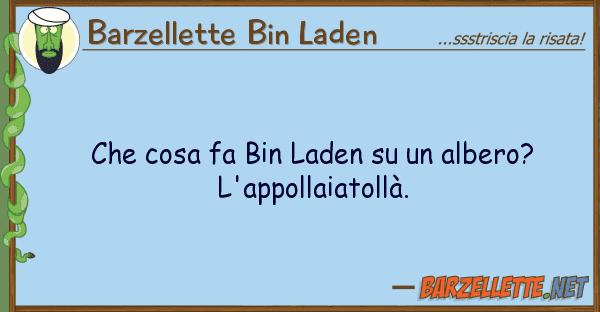 Barzellette Bin Laden cosa fa bin laden albero? l'a