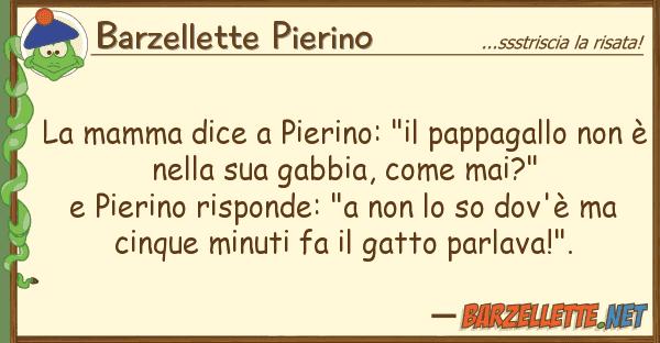 """Barzellette Pierino mamma dice pierino: """"il pappagallo"""
