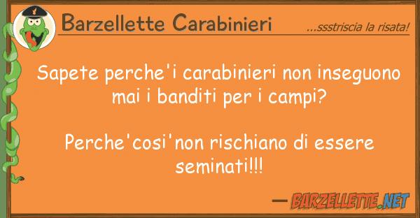 Barzellette Carabinieri sapete perche'i carabinieri inseguon