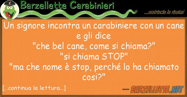 Barzellette Carabinieri signore incontra carabiniere u