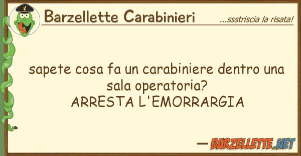 Barzellette Carabinieri sapete cosa fa carabiniere dentro