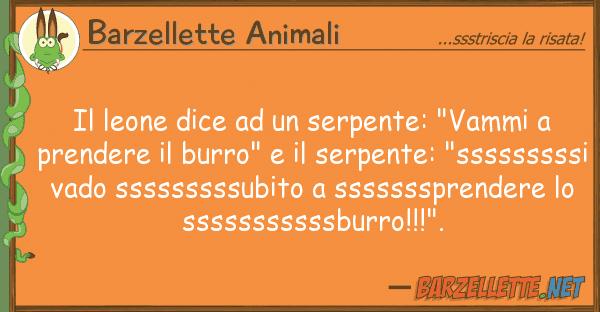 """Barzellette Animali leone dice serpente: """"vammi p"""