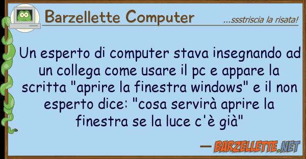 Barzellette Computer esperto computer stava insegnando