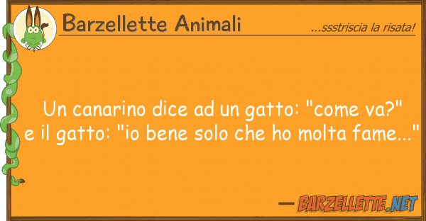 "Barzellette Animali canarino dice gatto: ""come va?"""