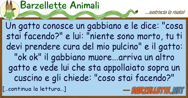 Barzellette Animali gatto conosce gabbiano dice: